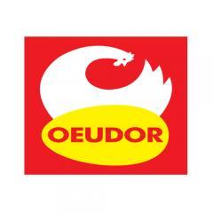 Oeudor logo